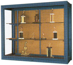 Premiere Wall Mounted Display Cases Feature Heavy Gauge Aluminum Frame In Satin Anodize Finish Color And Powder Coat Finishes Are Optional